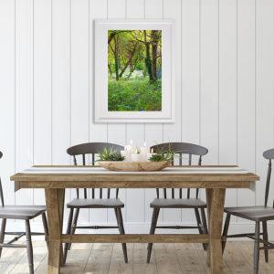 Ballyseedy Woods in room setting