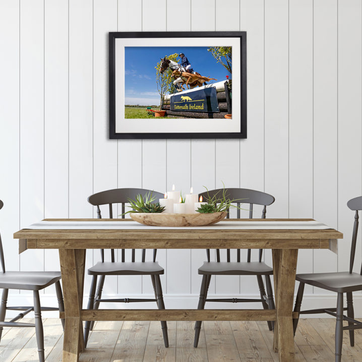 Horse Event With Dog in room setting