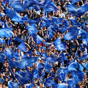 Leinster Rugby Fans