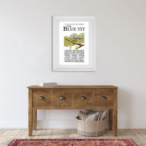 Birds of Ireland - The Blue Tit. An Meantán Gorm in room setting