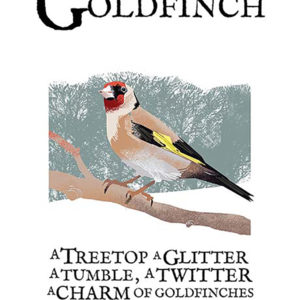 A4 or A3 print of the Goldfinch