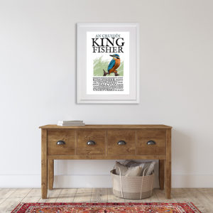Birds of Ireland - The Kingfisher. An Cruidín in room setting
