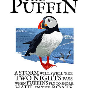 A4 or A3 print of the Puffin