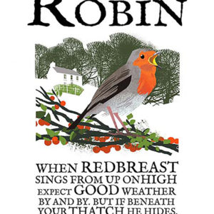 A4 or A3 print of the Robin