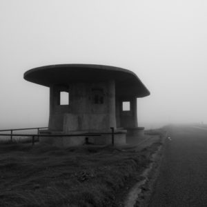 Foggy morning at Bull Island