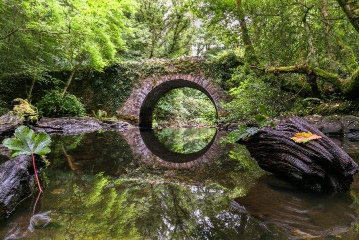 A reflecting shot of the lovely bridge on the Deepark Walk.