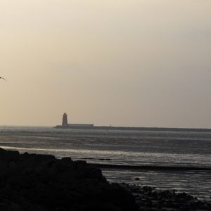 View of Southwall Lighthouse from Dollymount Dublin