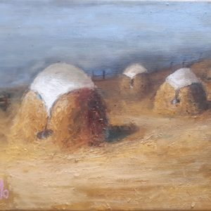 Haystacks with a white sheet on top.