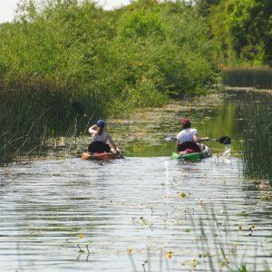 Kayaking on Royal Canal County Kildare