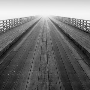 This is the wooden bridge leading from the mainland to Bull Island