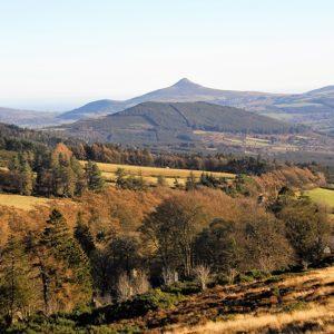 Impressive Wicklow View from near Glencree
