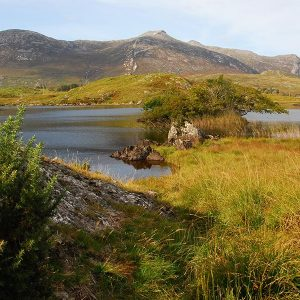 Connemara View